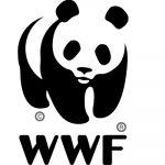WWF Brazil